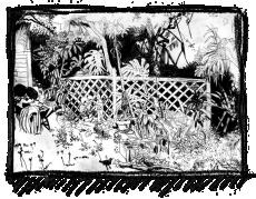 Rox Flame - Wellington New Zealand Artist - new years